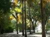 Lovely Nature walk