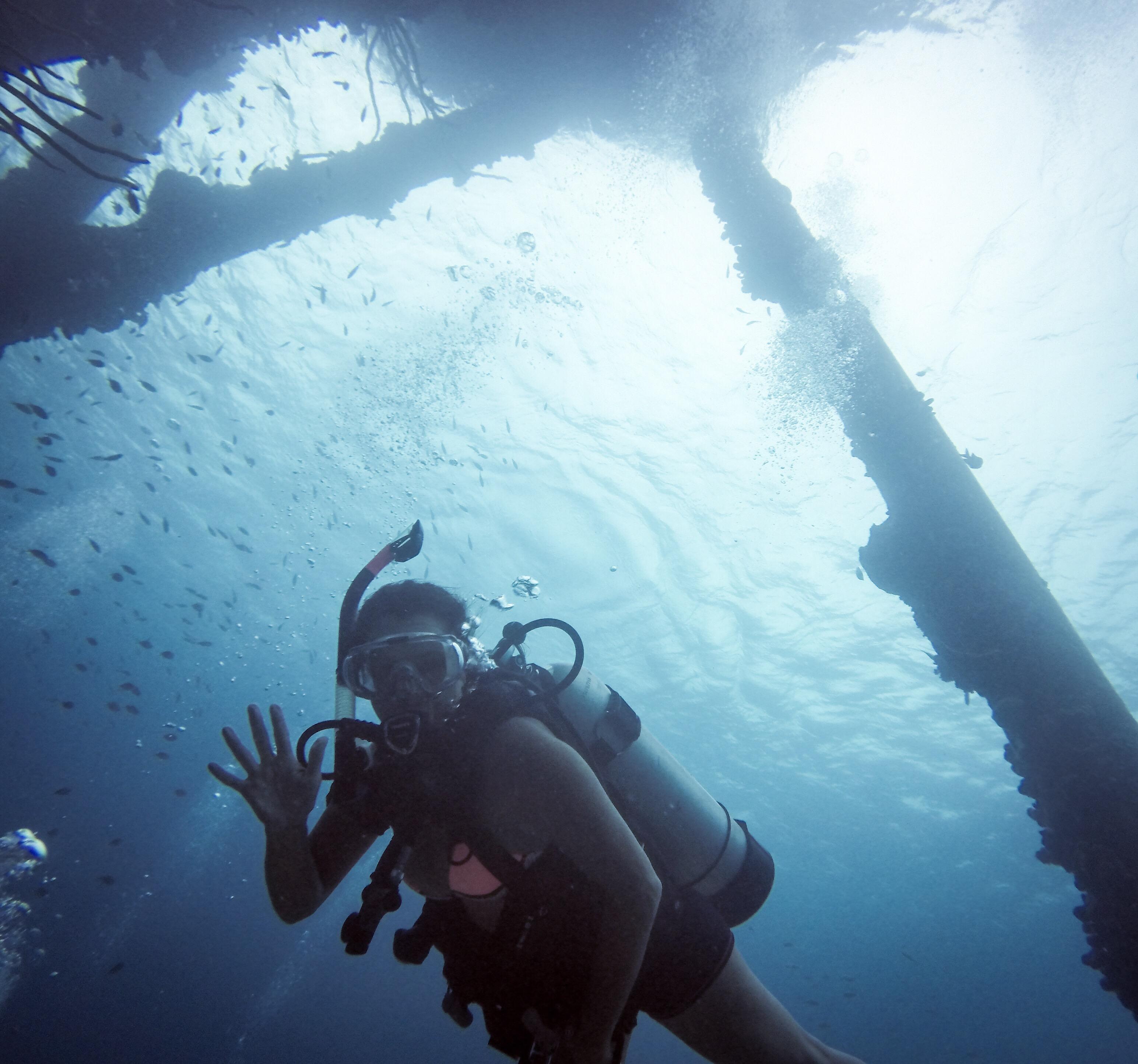Salt Pier dive