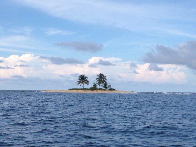 Two-Palm Island Picnic