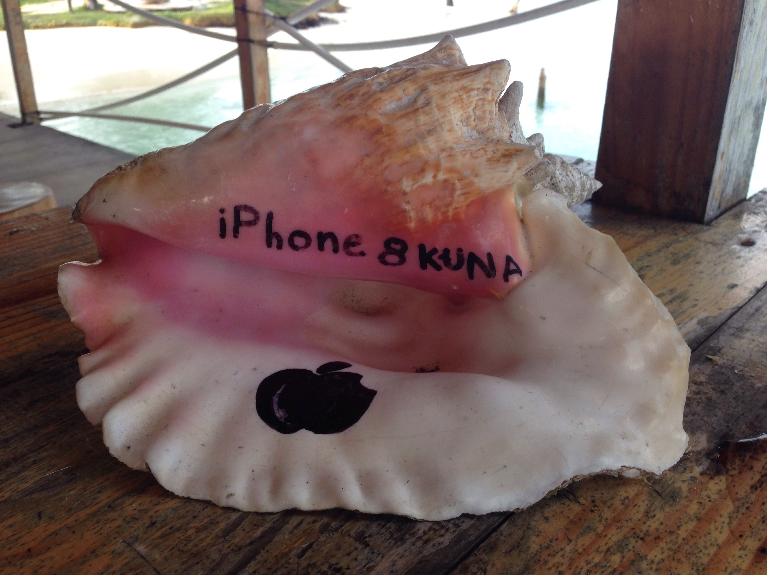 Would you trade your iPhone for this island phone?