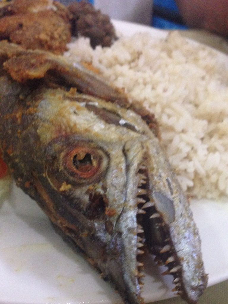 Lunch for Louis - Fish Head