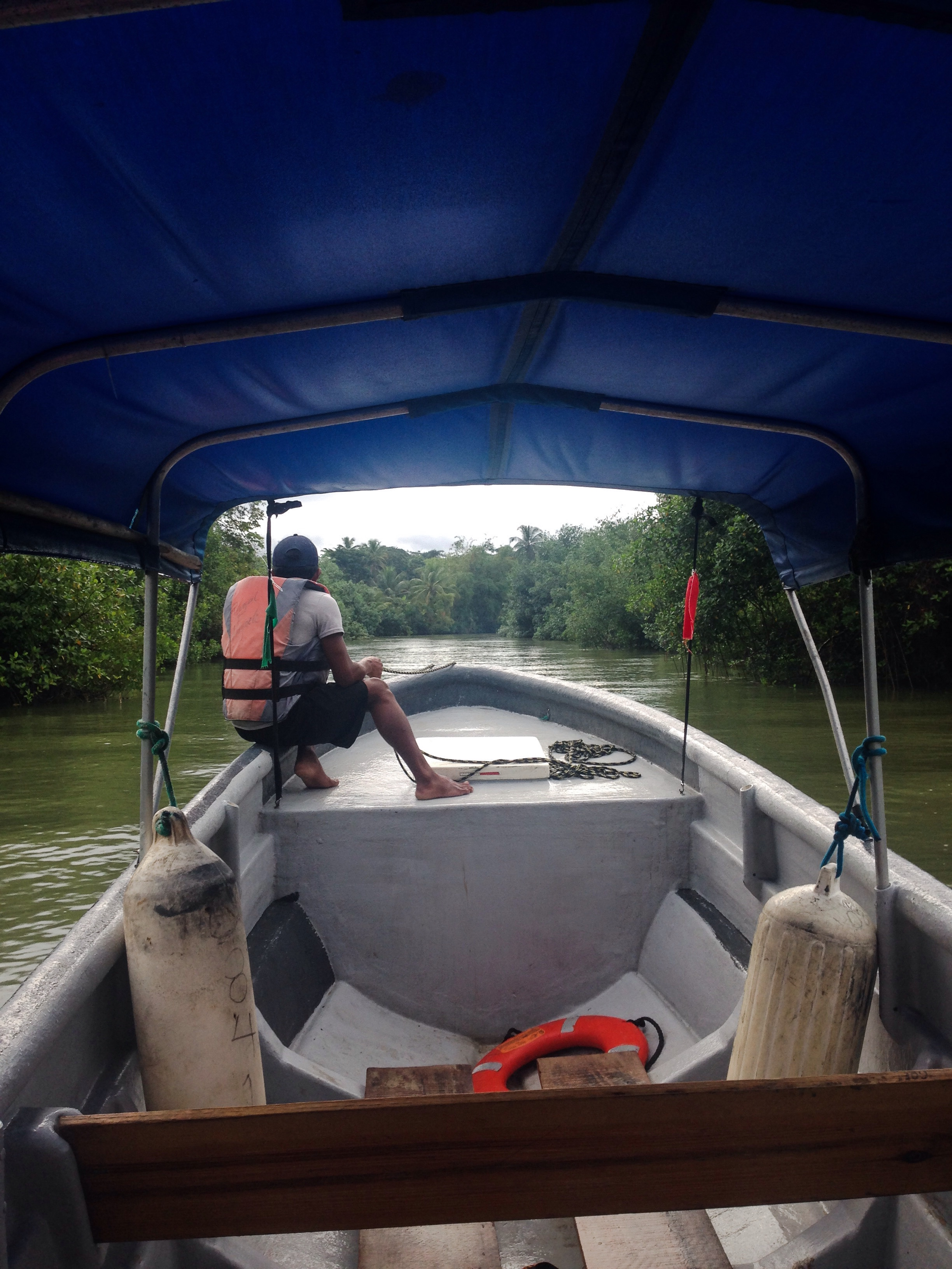 Traveling up Rio Carti Grande in the panga