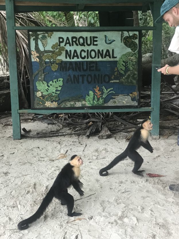 Manuel Antonio Residents
