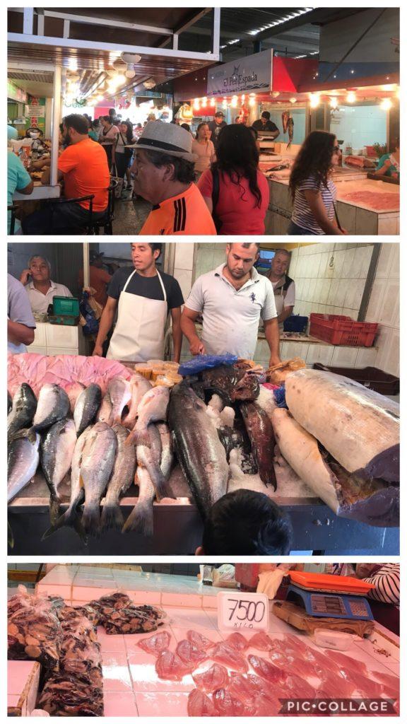 Fresh Meat Market Antofagasta