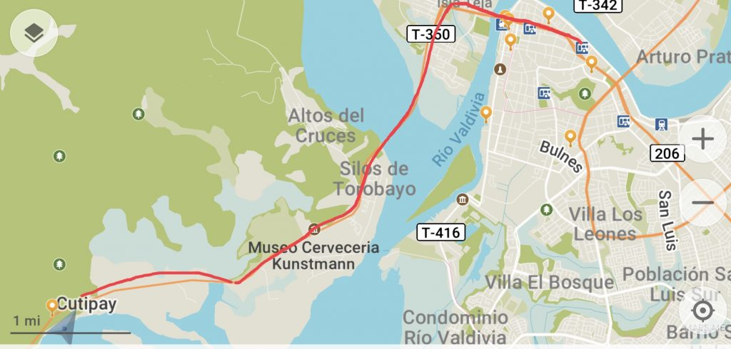 Bus route Marina to Downtown Valdivia