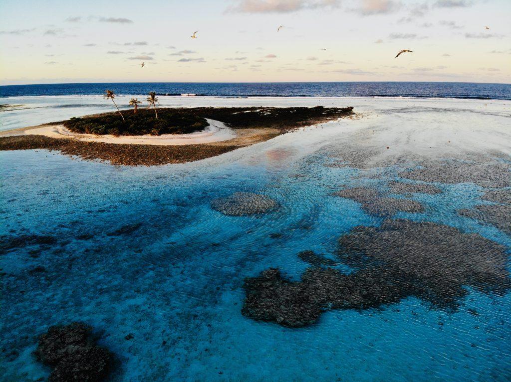 Three Palm Island in Totegegie