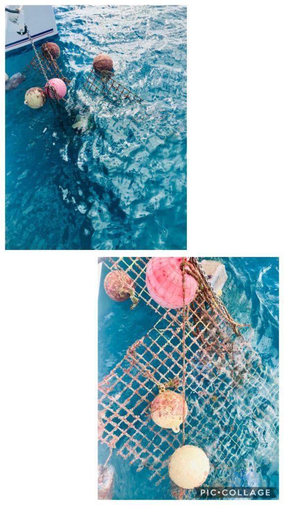 Pulled up rebar while at anchor